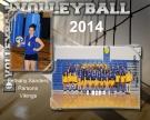Volleyball-hz